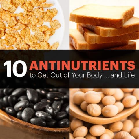 10 Antinutrients to Get out of Your Diet … and Life