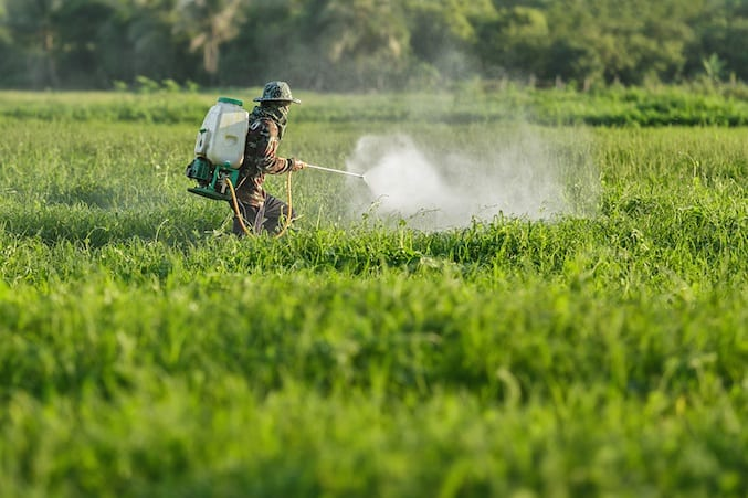 A Connection between Autism & Glyphosate