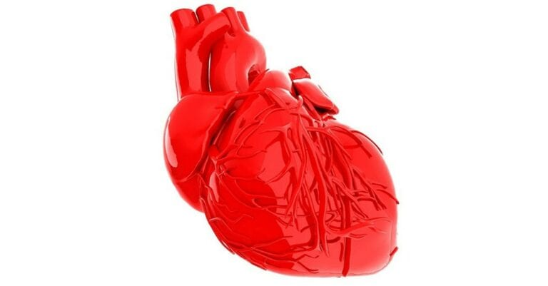 Mainstream Medicine Study Confirms Chelation Therapy Significantly Lowers Heart Attack and Stroke Risk