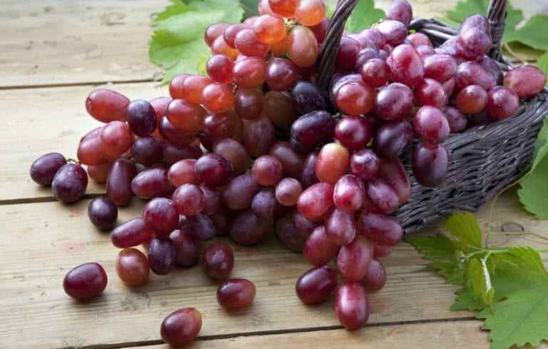 Double-Blind Study Shows Resveratrol May Help Prevent Alzheimer's Disease