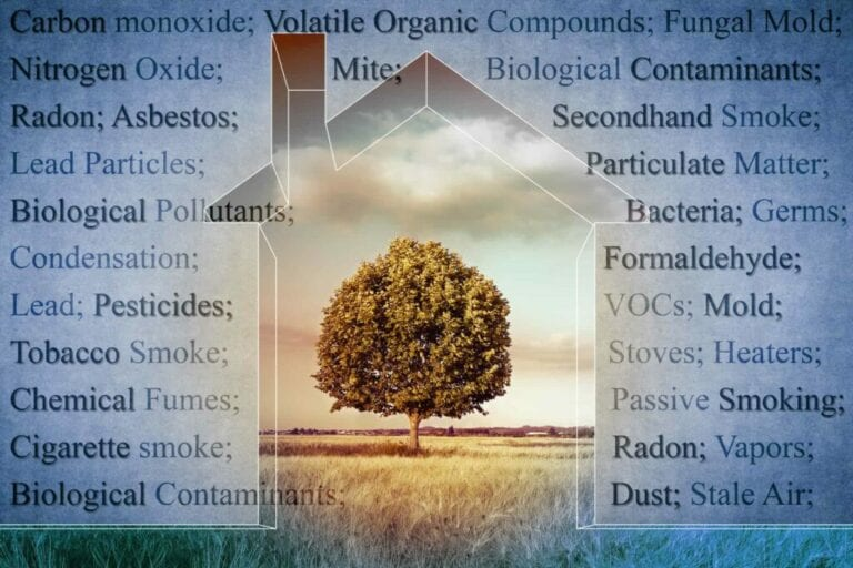 Are Pollutants Causing Heart Disease and Type 2 Diabetes? The Link between Persistent Organic Pollutants and Metabolic Syndrome