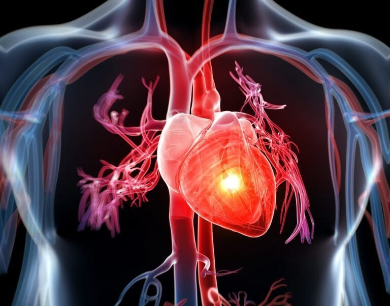 Heal Your Heart through Your Gut