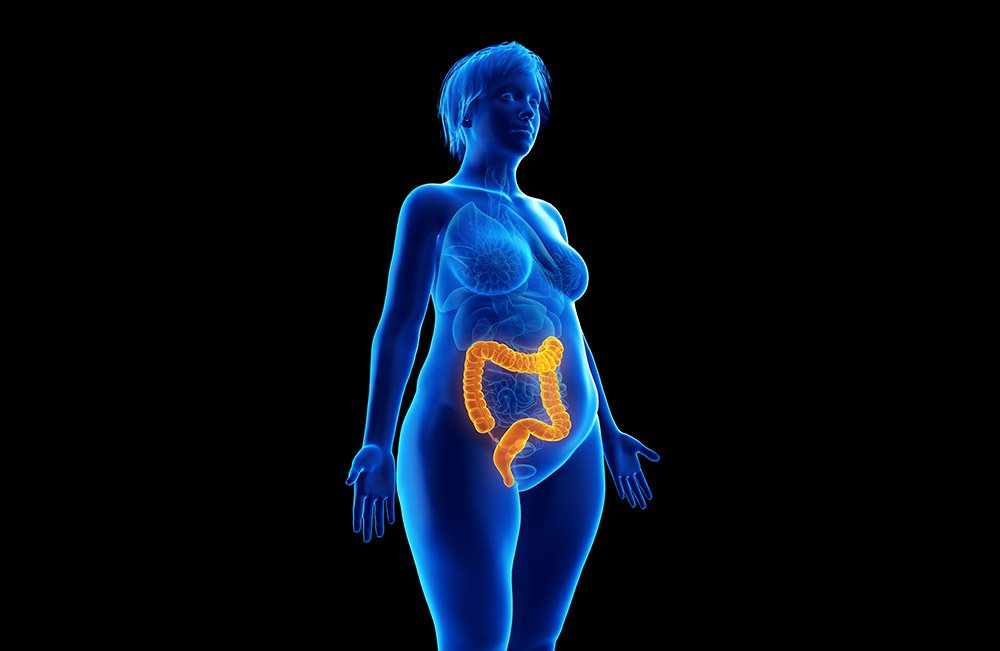 Bacterium Associated with Antibiotic-Induced Colitis Plays a Role in Weight Control
