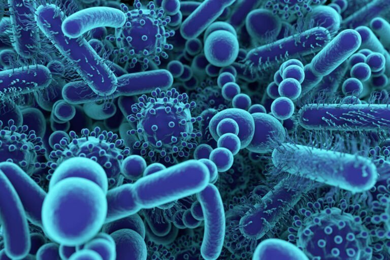Could Alterations in the Gut Microbiome Mediate Chronic Pain in Patients with Fibromyalgia?