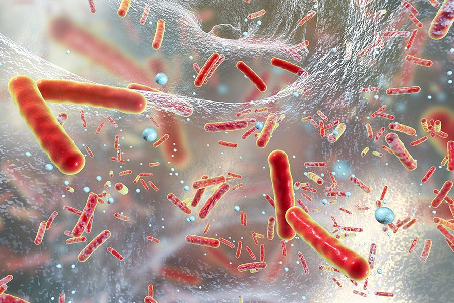 Biofilms and How They Affect Your Health