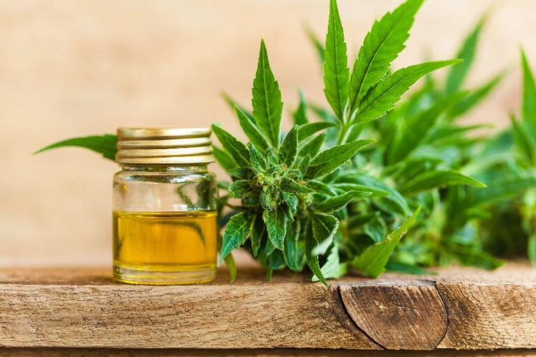 Not Your Grandpa's Weed: The Ways CBD Supports Your Health