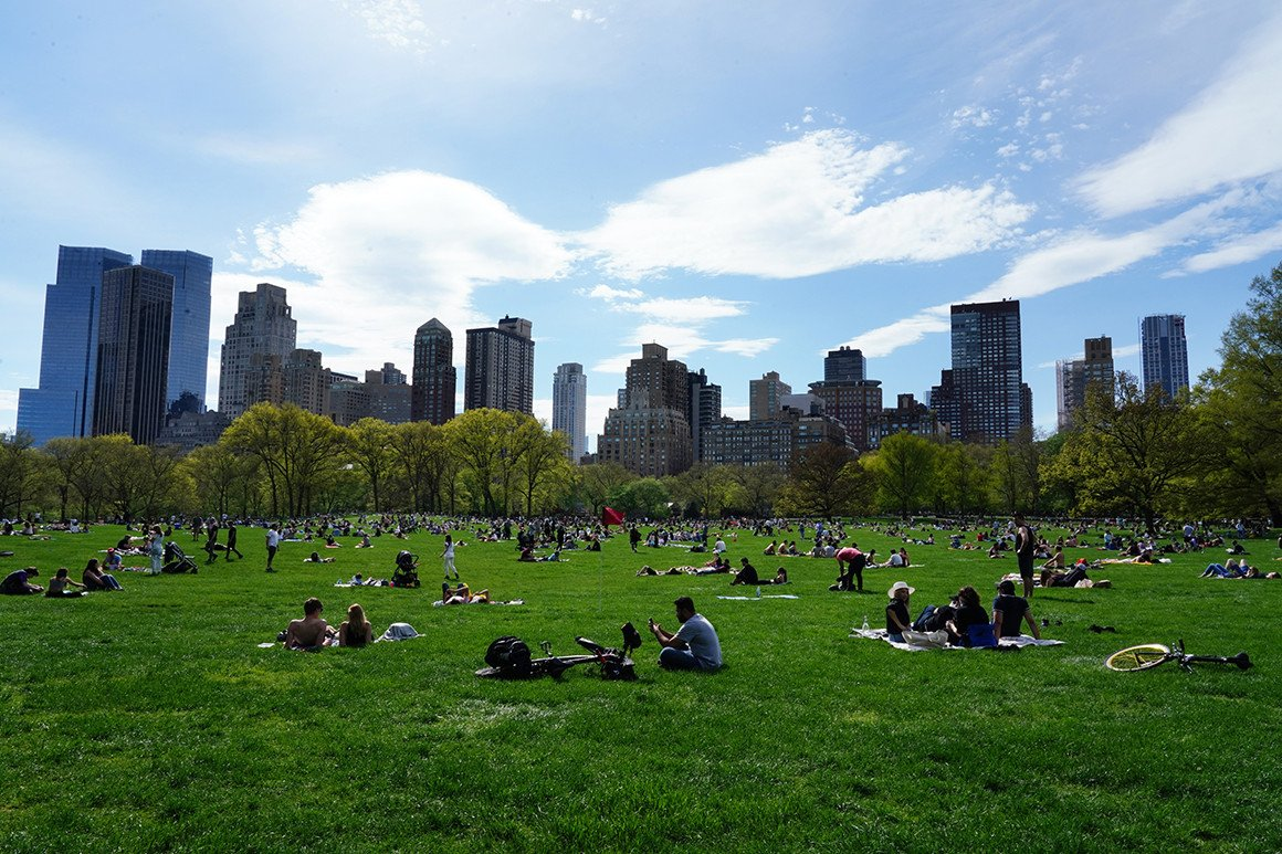 Study Finds Green Spaces Linked to Lower Racial Disparity in COVID-19 Infection Rates
