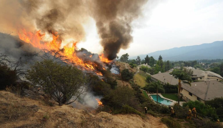 The Health Effects of Wildfire Smoke