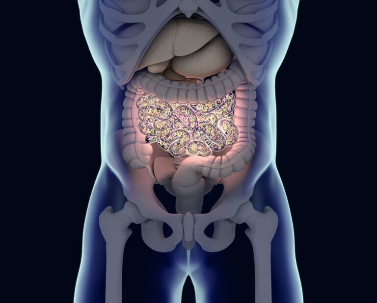 New Study Identifies Changes in the Gut Microbiome in Patients with Fibromyalgia