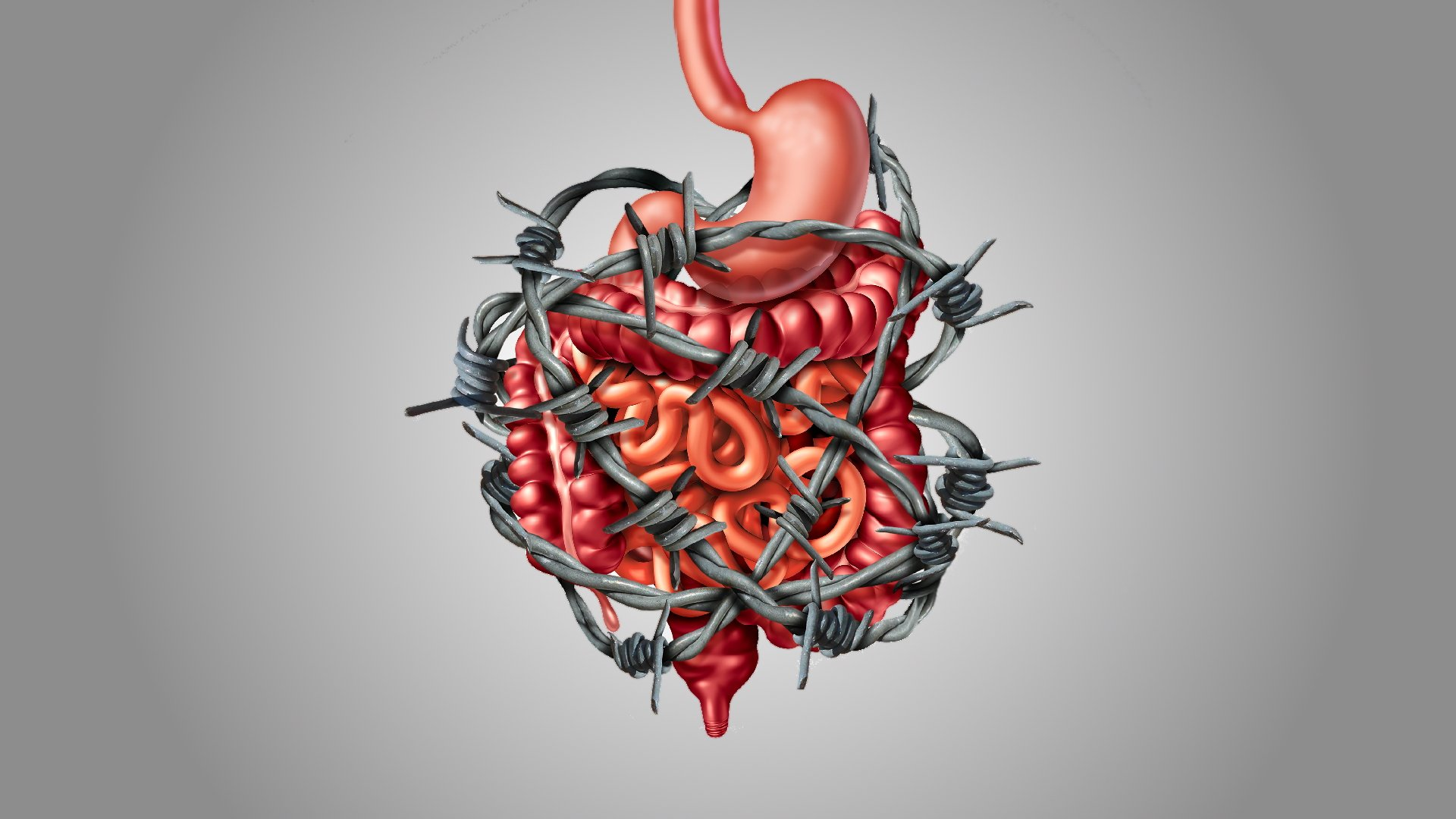 Gut Inflammation: 12 Causes (and 12 Effects)